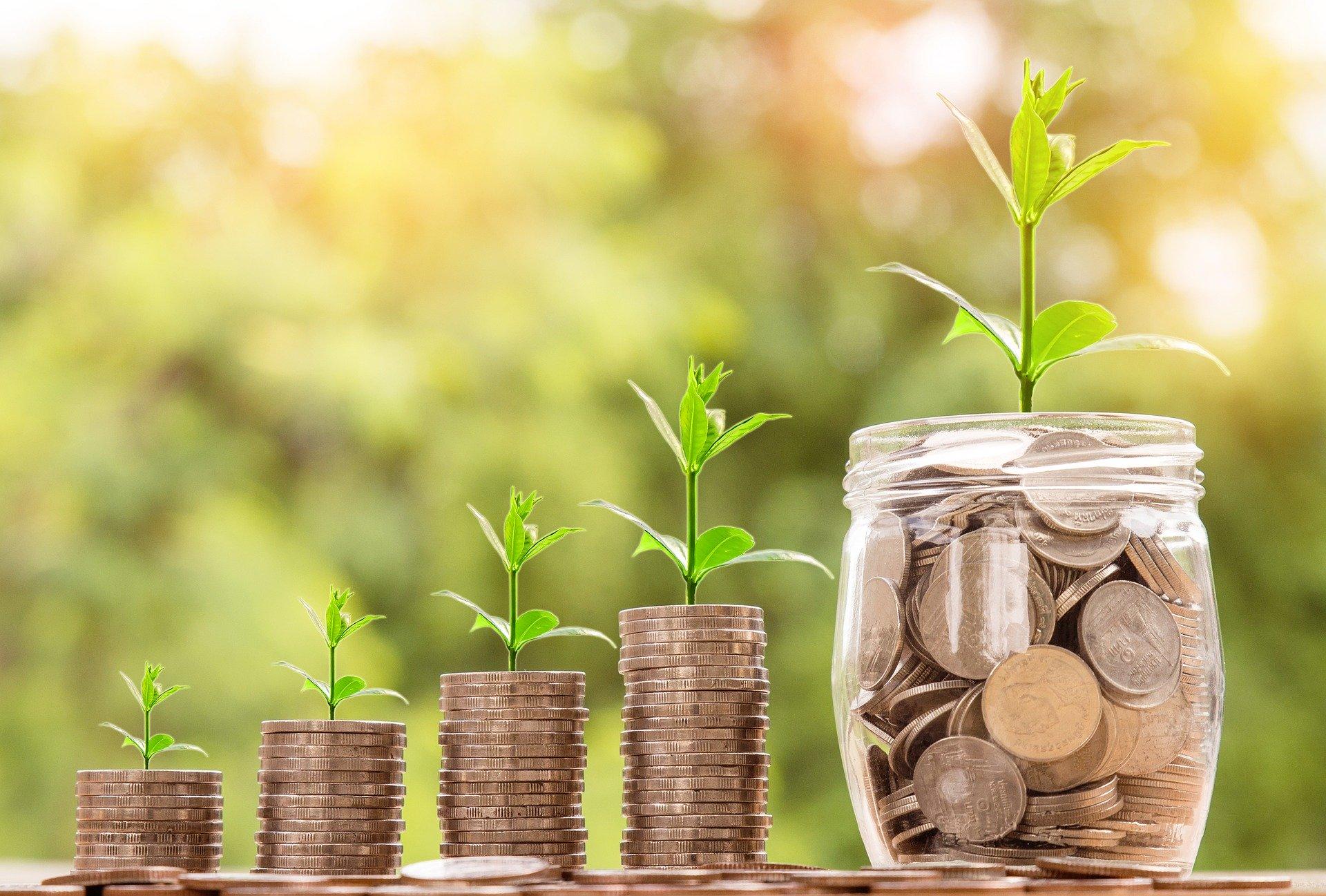 Economizar, poupar e investir