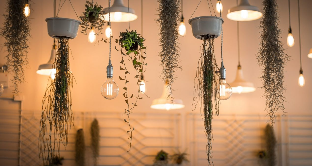 5 dicas de como poupar energia elétrica