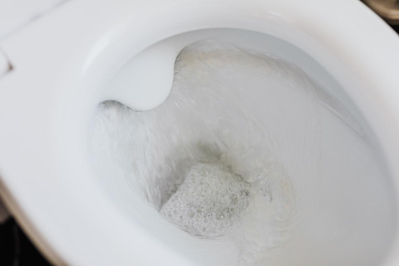 Sanita/Vaso sanitário com água